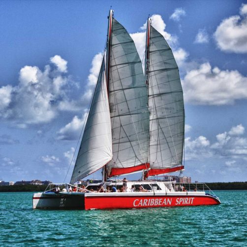 Tropical Sailing Catamaran Charters – Book The Best Wedding Venue