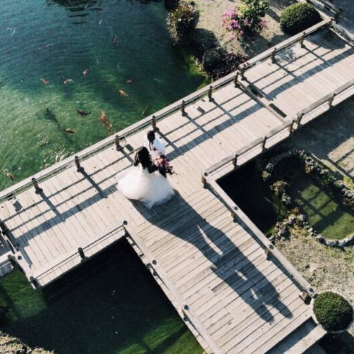 Redland Koi Gardens – Book The Best Wedding Venue